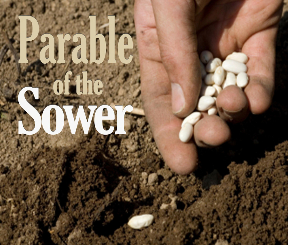 Parable_of_Sower_artwork1
