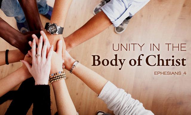 unity-in-the-body