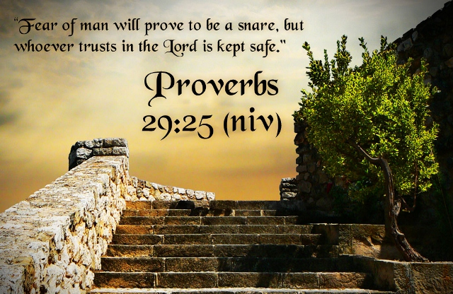Bible Verses On Fear Proverbs 29 25 Trust In GOD HD Wallpaper