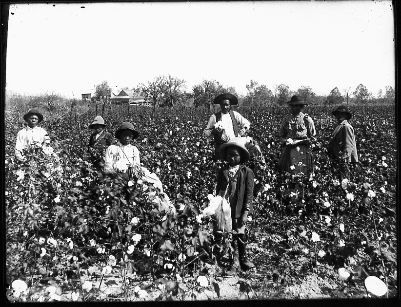 Plantation Workers
