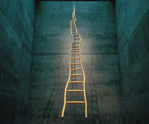 ladder_martin_puryear