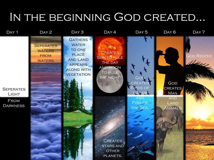 seven days of creation