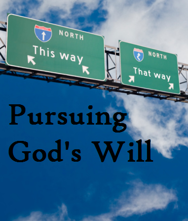pursuing-gods-will2