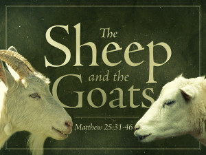 sheep-and-the-goats