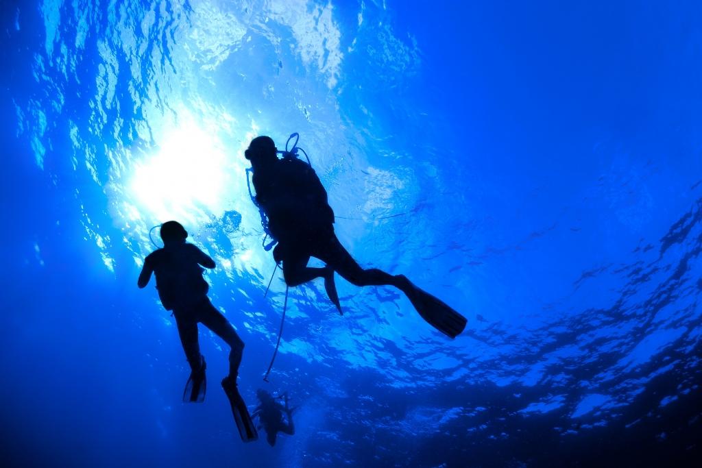 Ref: scubadiving | http://www.scubadiving.com/files/imagecache/wallpaper_2560x1600/wallpapers/divers.jpg