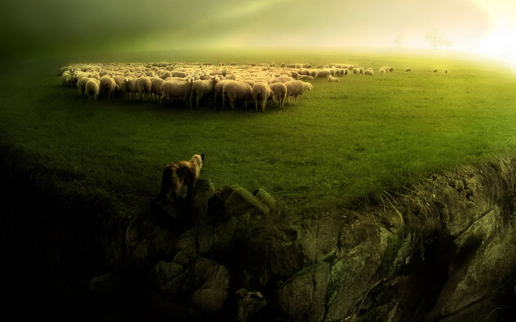 sheep_and_wolf_1920x12002