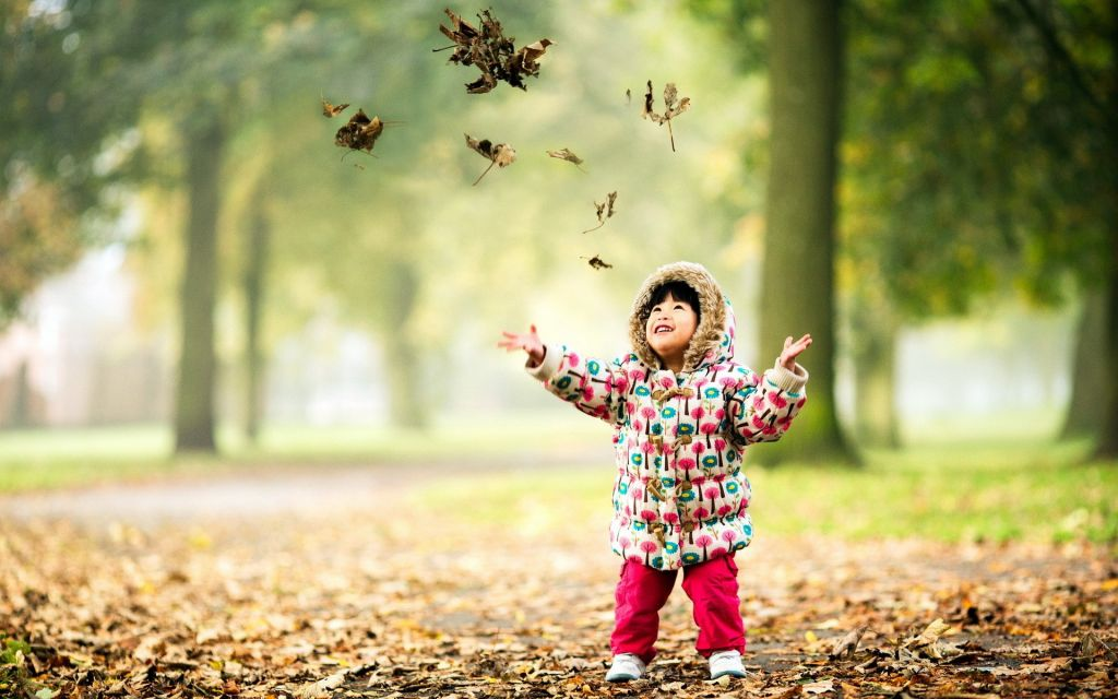 Ref: 7-themes | http://7-themes.com/data_images/out/58/6969751-child-happy-nature-autumn-leaves.jpg