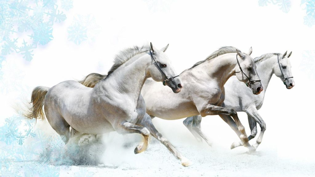 horse-art-beautiful-painnting-wallpapers
