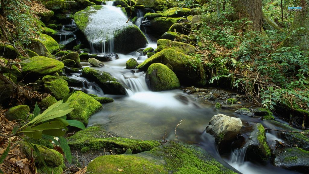 nature-landscapes_hdwallpaper_flowing-waters-of-the-fork_17491