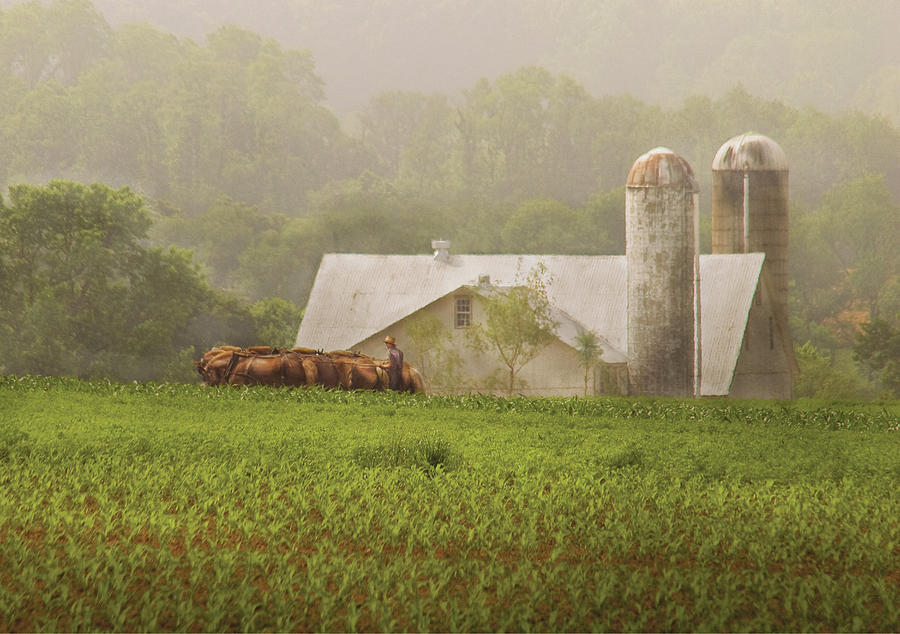 farm--farmer--farming-mike-savad