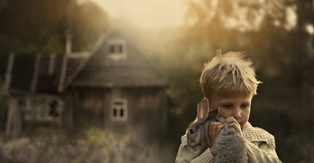 Ref: kindnessblogdotcom1 | https://kindnessblogdotcom1.files.wordpress.com/2013/12/rabbit.jpg