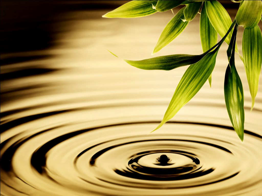 Green Stem and Water Ripple