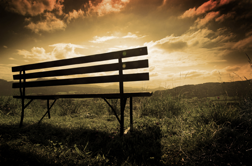 A wooden bench standing in nature Enhanced colors and contrast using warm filter
