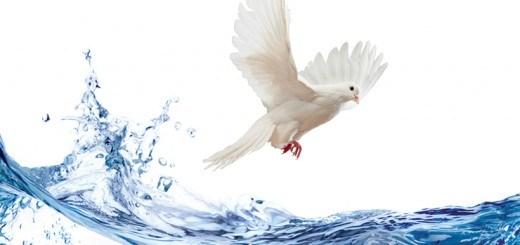 water_holy_spirit-520x245